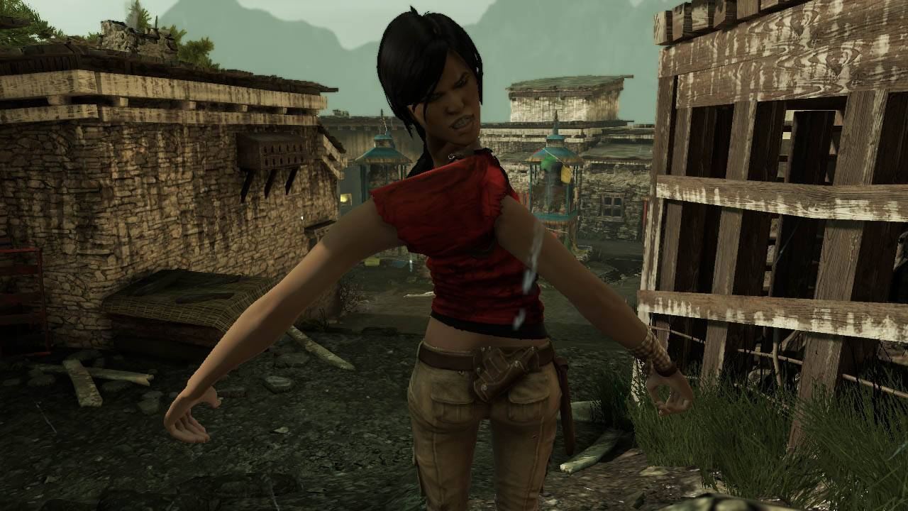 uncharted 2 insolite 6