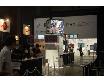 TOKYO GAME SHOW TGS 2010 SONY Stand Playstation 10