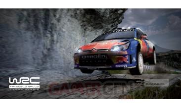WRC-ps3-image (15)