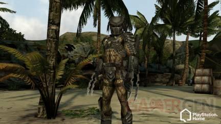 Aliens-vs-Predator-Outfits-Home-Playstation (10)