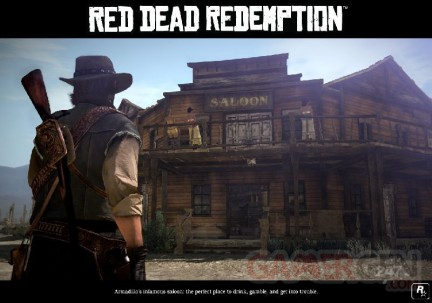 red_dead_redemption armadillo