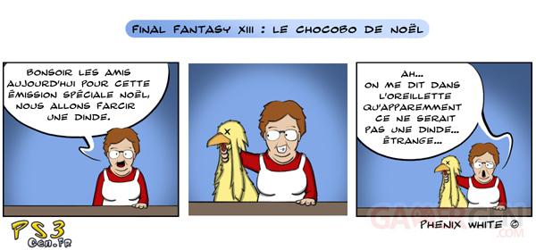 chocobo-maite-actu-dessin