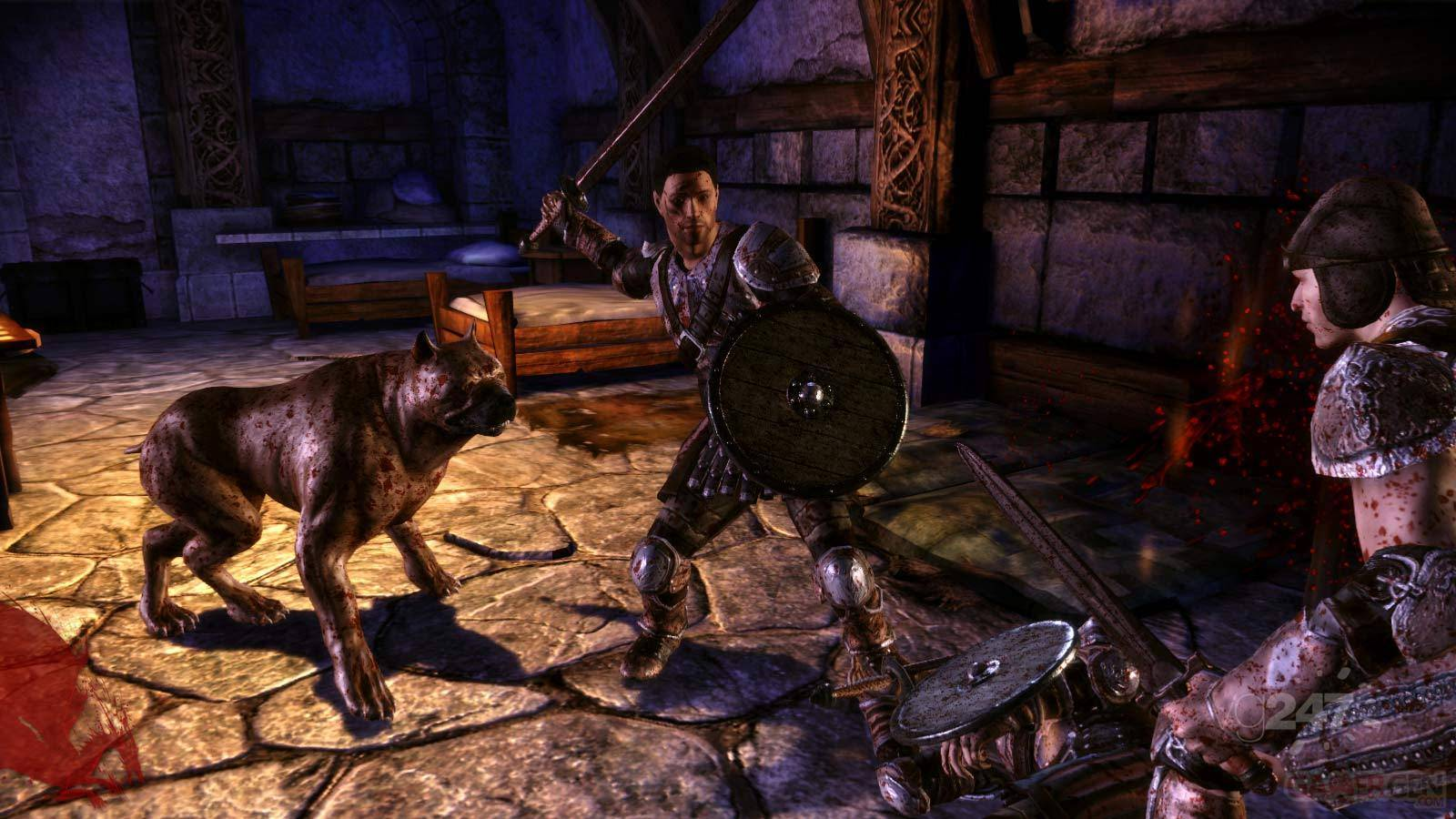 dragon age origins noble11_jpg_jpgcopy