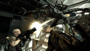 aliens_versus_predator_02