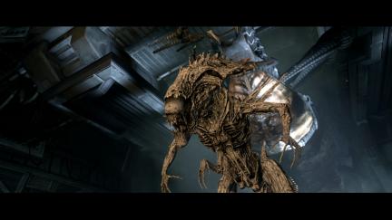 Aliens vs Predator - Aliens - 9