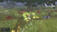 Atelier Ayesha screenshot 16012013 006
