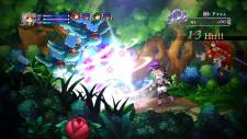 Battle-Princess-of-Arcadias_03-07-2013_screenshot-13