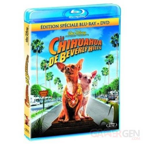 blu-ray jaquette chihuahua beverly hills
