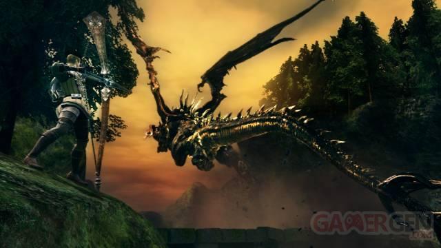 Dark-Souls_12-06-2012_screenshot-8