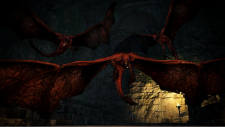 Dragon's Dogma Dark Arisen screenshot 23012013 011