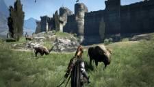 Dragons-Dogma_01-11-2011_screenshot-3