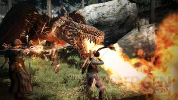 Dragons-Dogma_16-04-2012_screenshot (105)