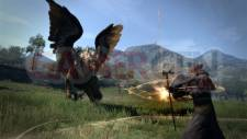 Dragons-Dogma-Image-09-05-2011-09
