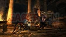 Dragons-Dogma-Image-11-07-2011-02