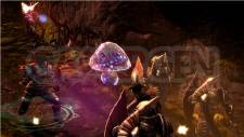 Dungeon-Siege-III-Image-08022011-01