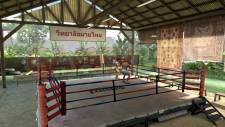 EA-Sports-MMA-3