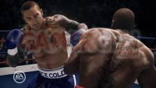 Fight-Night-Campion_15012011 (6)