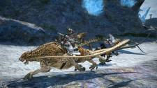 Final-Fantasy-XIV-A-Realm-Reborn_04-07-2013_screenshot (4)