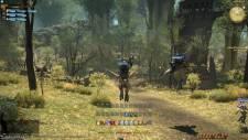 Final-Fantasy-XIV-A-Realm-Reborn_15-08-2012_screenshot (10)
