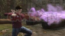 Harry-Potter-et-les-Reliques-de-la-Mort_28