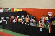 Japan Aurea 2012 - 0207