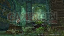 Majin and the forsaken kingdom 27152KB_ScreenShot_100308_048