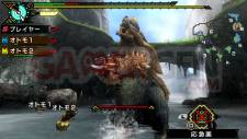 Monster-Hunter-Portable-3rd-HD_screenshot-11