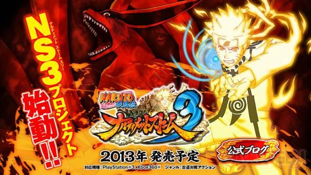 Naruto Shippuden Ultimate Ninja Storm 3 site internet