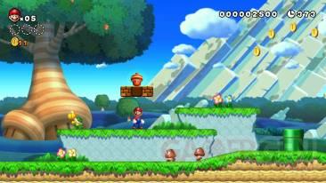 New-Super-Mario-Bros-U-Screen-2