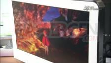 ni-no-kuni-screenshot-20110130-03
