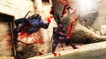 Ninja Gaiden 3 16.03 (11)