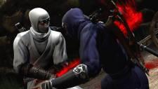 Ninja-Gaiden-3_2011_12-07-11_011