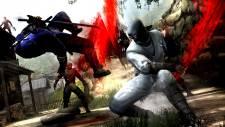 Ninja-Gaiden-3_2011_12-07-11_018