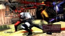 Ninja-Gaiden-3_2011_12-07-11_033