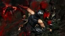 Ninja-Gaiden-3-Image-230112-12