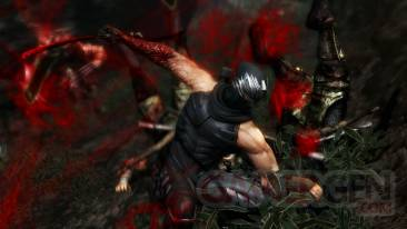 Ninja_Gaiden_3_screenshot_12012012_02.jpg