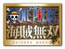 One-Piece-Kaizoku-Musou-Image-05092011-01