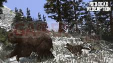 Red-Dead-Redemption_chasse-11