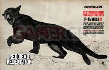 Red-Dead-Redemption_chasse-19