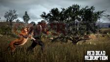 Red-Dead-Redemption_chasse-4