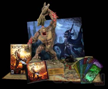 Les-Royaumes-d-Amalur-Reckoning-Image-Collectors-Edition