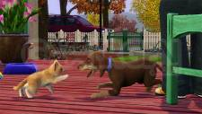 les-sims-3-animaux-cie-screenshots-captures-03062011-001