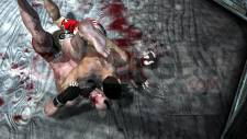 Supremacy-MMA_8_16012011