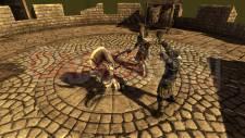The-Curse-Crusade_15-07-2011_screenshot-10