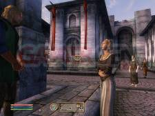 The-Elder-Scrolls-IV-Oblivion-Image-PC-23092011-01