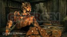 The-Elder-Scrolls-V-Skyrim_13-08-2011_screenshot-2