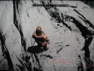 The_Elder_Scrolls_V_Skyrim_bug_screenshot_01.jpg The_Elder_Scrolls_V_Skyrim_bug_screenshot_02.jpg