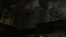 The Last Guardian images screenshots 021