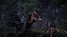 The-Witcher-3-Wild-Hunt_03-03-2013_screenshot-4
