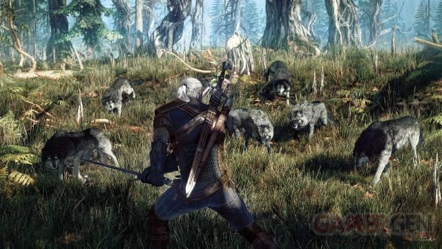 The-Witcher-3-Wild-Hunt_25-06-2013_screenshot-4